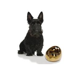 Bobby-Hondenvoerbakken-Etensbakken